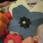 fleurs playmaïs