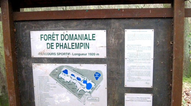 Forêt domaniale de Phalempin
