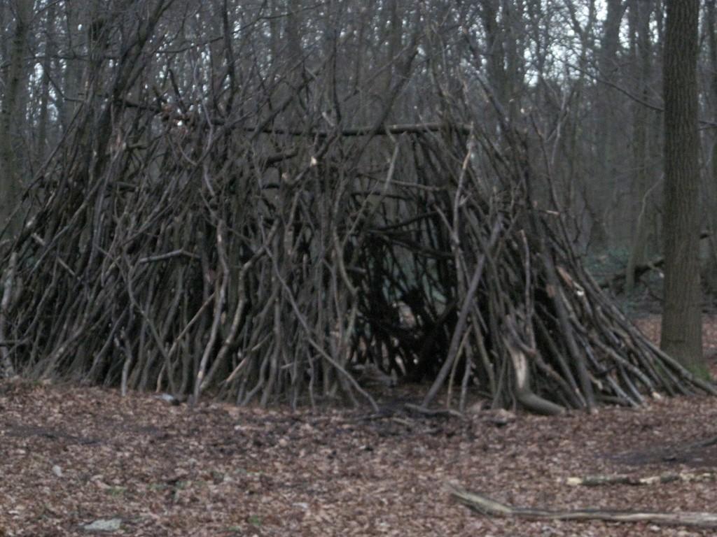 cabane de branches